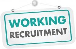 https://www.mncjobs.co.uk/company/working-recruitment-ltd-1620746270